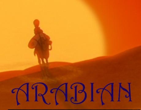 Arabian2 Sinfoart